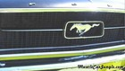 1967 Ford Mustang Grill