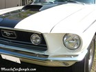 1968 428 CJ Mustang Fastback Front