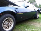 1979 Firebird Trans Am Side