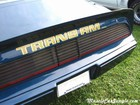 1979 Firebird Trans Am Trunk