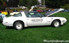 1980 Trans Am Pace Car Right Profile